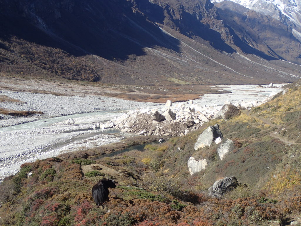 New Rock Slide over the river